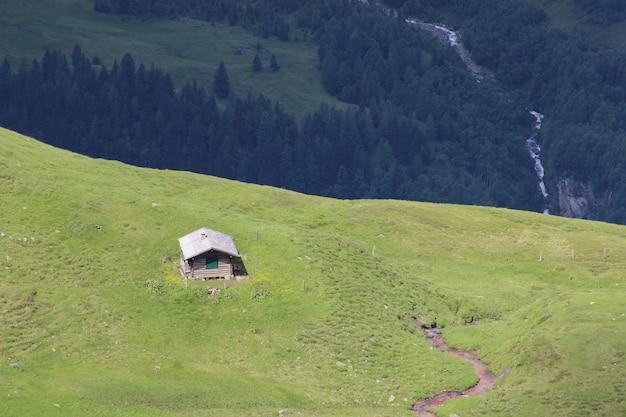 Vista aérea de un campo verde en una colina con una pequeña cabaña y un bosque en la parte de atrás
