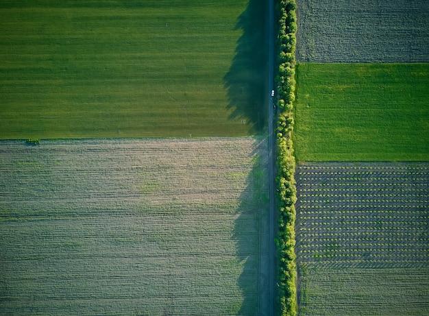 Vista aérea de los campos agrícolas.
