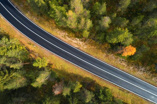 Vista aérea de la carretera en el bosque italiano al amanecer