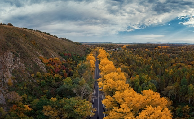Vista aérea de la carretera en el hermoso bosque otoñal de altai