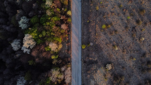 Vista aérea de una carretera a través de la naturaleza salvaje.