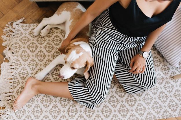 Vista aérea de la chica bronceada en pantalones a rayas sentado en una alfombra con perro beagle durmiendo al lado