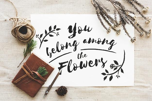Vista aérea de usted pertenece entre la frase flores sobre papel blanco con decoración de flores