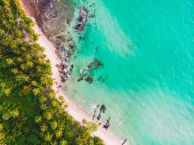 Vista aérea de hermosa playa y mar con palmera de coco