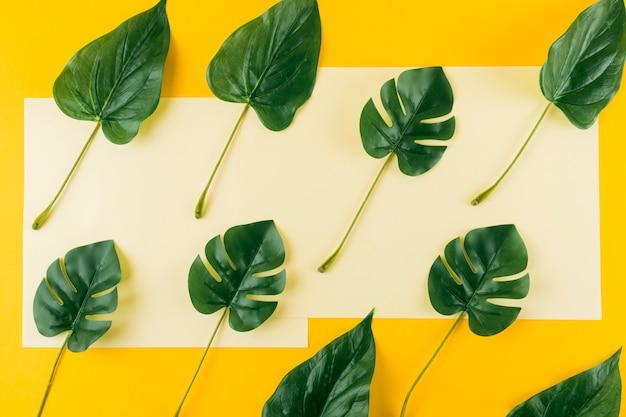 Vista aérea de hojas artificiales sobre papel y fondo amarillo.