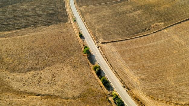 Vista aérea del largo camino con árboles