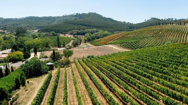 Vista aérea del paisaje de campos de cultivos rurales
