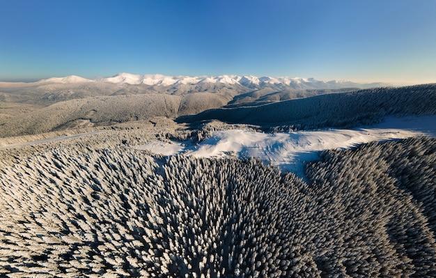 Vista aérea del paisaje invernal con colinas cubiertas de pinos de hoja perenne después de fuertes nevadas en un día frío y brillante.