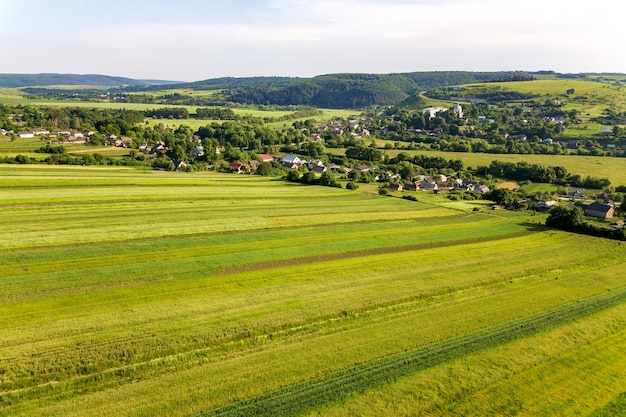 La vista aérea de un pequeño pueblo gana muchas casas y verdes campos agrícolas en primavera con vegetación fresca después de la temporada de siembra en un día cálido y soleado.