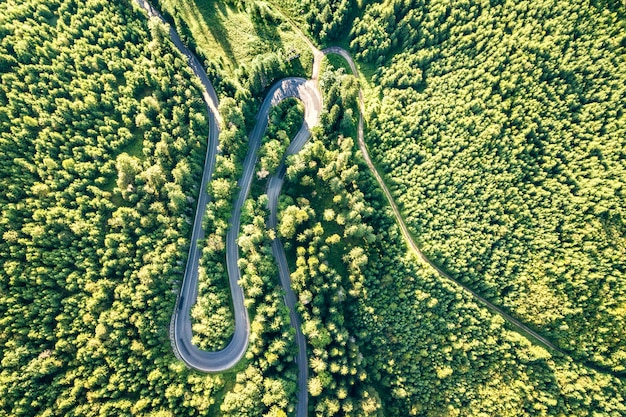 Vista aérea de la sinuosa carretera en el paso de alta montaña a través de densos bosques de pinos verdes.