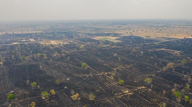 Vista aérea sobre el campo de arroz en llamas después de la cosecha