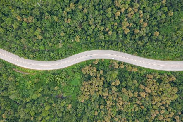 Vista aérea superior de camino camino en bosque, vista desde drone