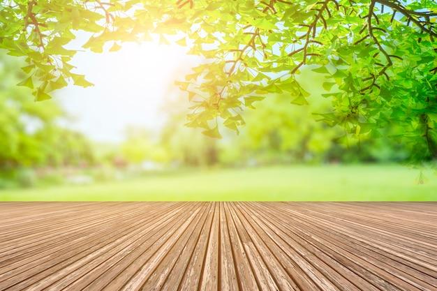 Vista al parque verde