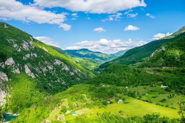 Vista desde la altura del cañón hasta el rápido río tara.