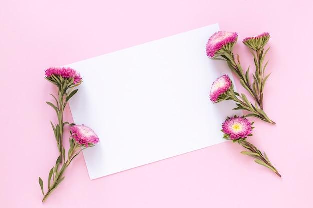 Vista de ángulo alto de flores y hoja de papel en blanco sobre fondo rosa