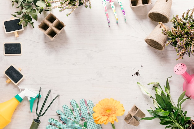 Vista de ángulo alto de la planta; guante de jardineria flor; rastrillo; rociador; regadera; bandeja de turba y estaca en escritorio de madera.