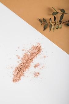 Vista de ángulo alto de polvo de cara y planta sobre fondo de color dual