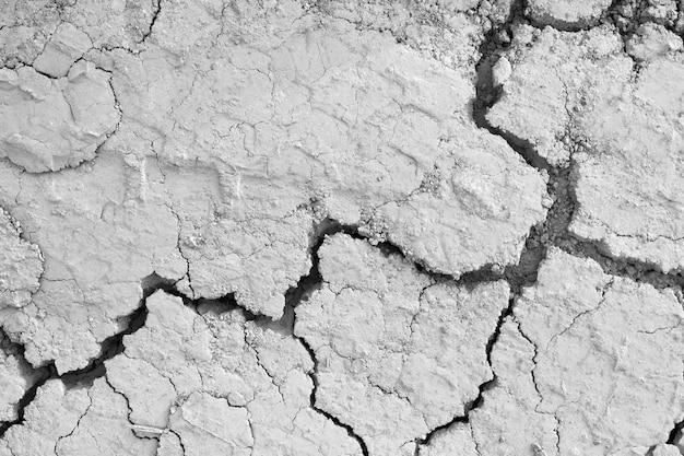 Vista anterior del suelo gris grietas en el desierto.