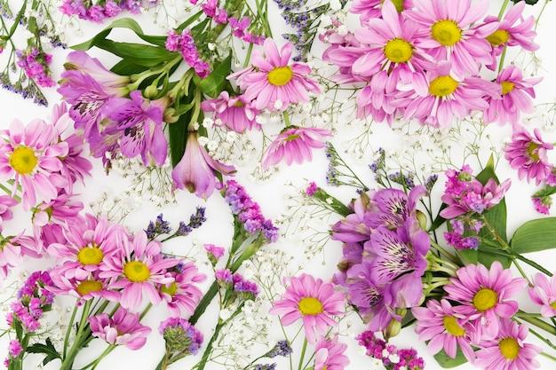 Vista de arriba arreglo de flores de color púrpura