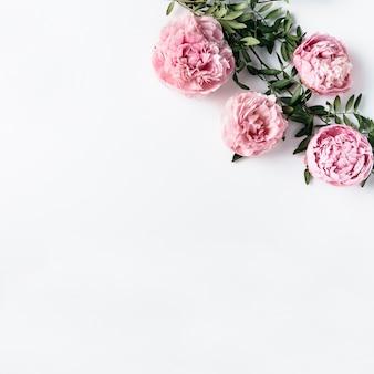Vista desde arriba de claveles rosas