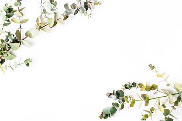 Vista desde arriba de hojas verdes