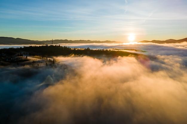 Vista desde arriba de los pinos oscuros de mal humor en el bosque neblinoso de abetos con brillantes rayos del amanecer brillando a través de las ramas en las montañas de otoño.