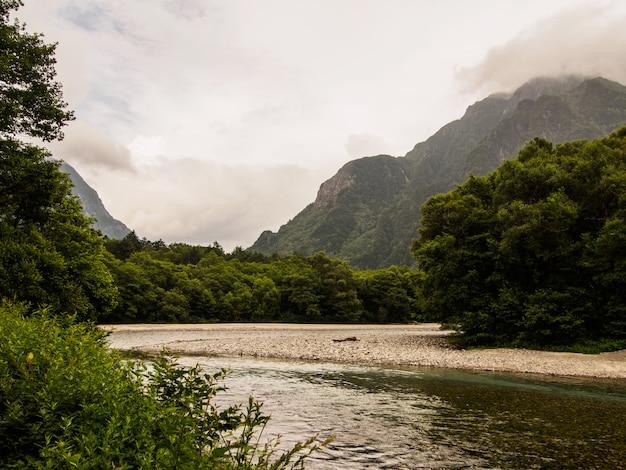La vista del arroyo fluye hacia abajo a través del bosque en la montaña con fondo de nubes en kamikochi, japón