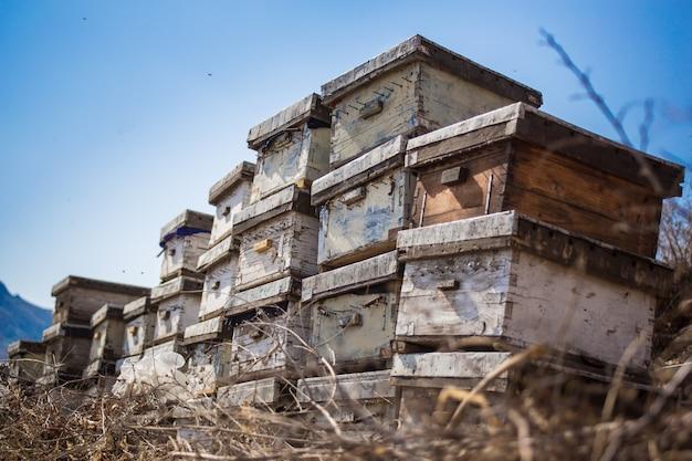 Vista de cajas de apicultor