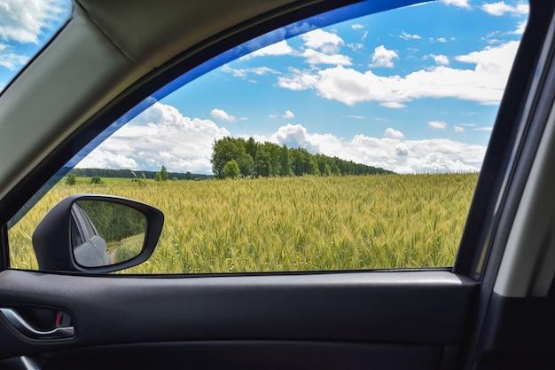 Vista del campo de trigo en la ventanilla del coche