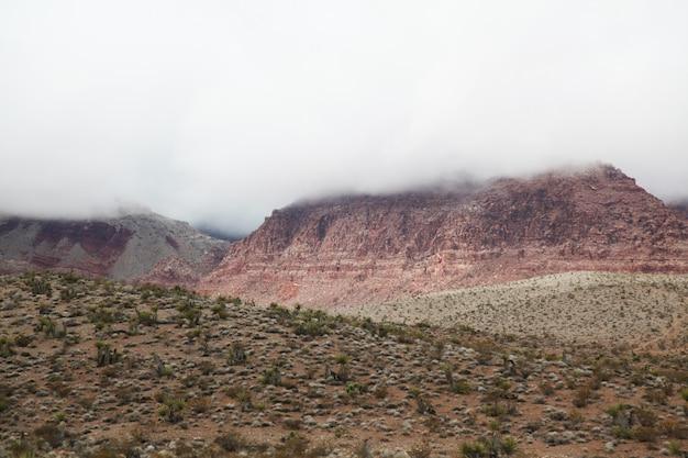 Vista del cañón de roca roja en el día de niebla en nevada, estados unidos
