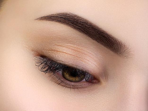 Vista de cerca del hermoso ojo femenino marrón. ceja de moda perfecta. buena visión, lentes de contacto, barra de cejas o concepto de maquillaje de cejas de moda