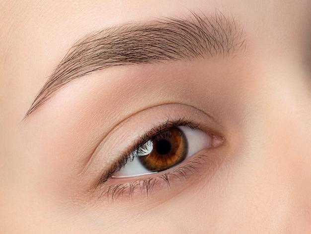 Vista de cerca del hermoso ojo femenino marrón con ceja de moda perfecta