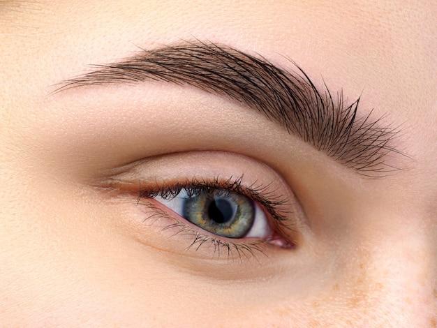 Vista de cerca del hermoso ojo femenino verde. ceja de moda perfecta. buena visión, lentes de contacto, barra de cejas o concepto de maquillaje de cejas de moda