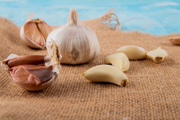 Vista cercana de bulbos de ajo y dientes pelados sobre superficie de tela de saco y fondo azul.