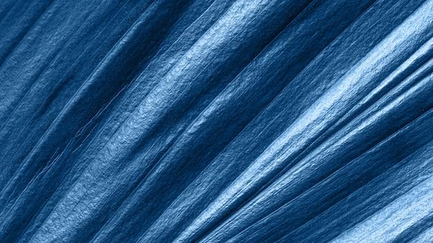 Vista cercana extrema de la hoja tropical entonada en color azul de la moda 2020.