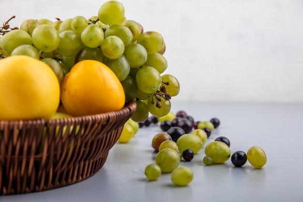 Vista cercana de frutas como nectacots de uva en canasta y bayas de uva sobre superficie gris y fondo blanco.