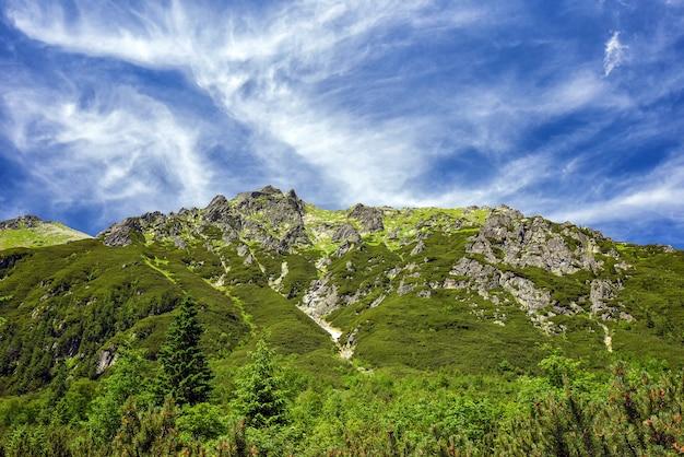 Vista del día soleado de las montañas tatra en la frontera de polonia y eslovaquia