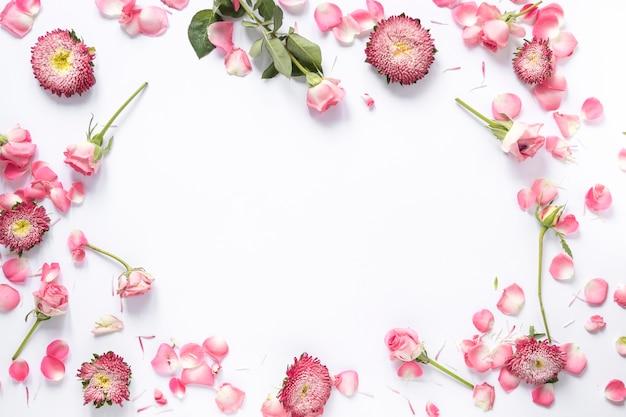 Vista elevada de flores frescas sobre fondo blanco