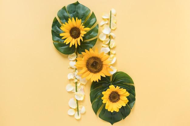 Vista elevada de girasoles frescos en monstera con pétalos blancos sobre fondo amarillo