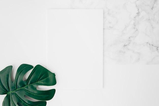 Una vista elevada de la hoja verde de monstera en una tarjeta en blanco blanca sobre el escritorio