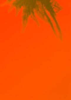Una vista elevada de hojas de helecho verde sobre un fondo naranja brillante