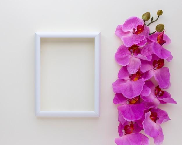 Vista elevada del marco de fotos en blanco con flores de orquídeas rosadas sobre fondo blanco