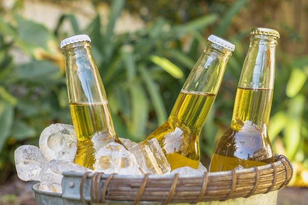 Vista frontal de botellas de bebidas en cubitos de hielo