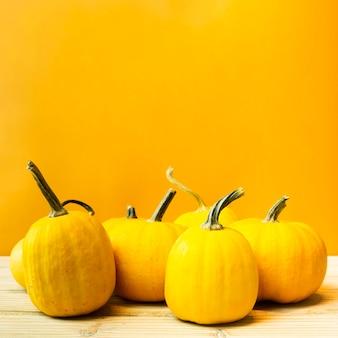 Vista frontal de calabazas con fondo amarillo