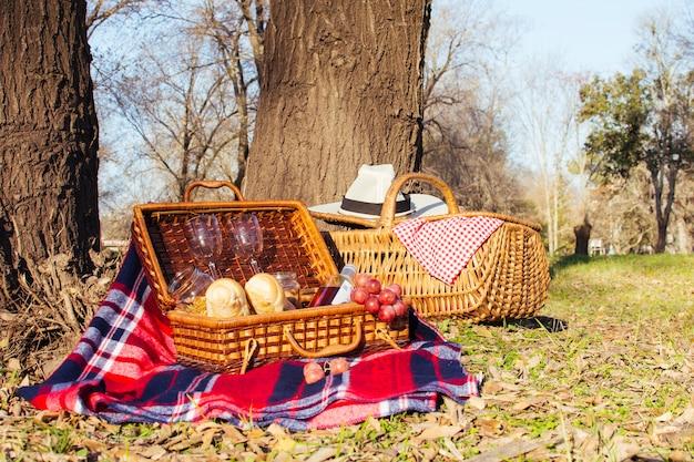 Vista frontal de cestas de picnic llenas de golosinas