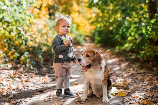Vista frontal de una chica sosteniendo una pelota de pie cerca de un perro beagle en el bosque