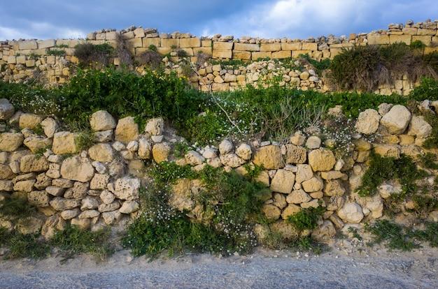 Vista frontal de un corto muro de piedra cubierto de plantas en un día soleado