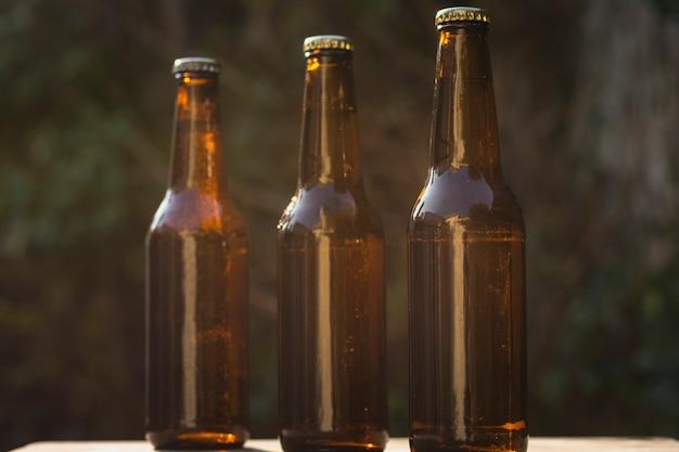 Vista frontal de diferentes tamaños de botellas de cerveza alineadas en la mesa