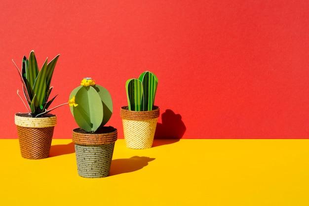 Vista frontal disposición de cactus sobre fondo rojo.