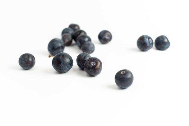 Vista frontal endrinos frescos frutas agrias y oscuras sobre el fondo blanco fruta fresca verano jugo vino